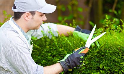 Garden Pay